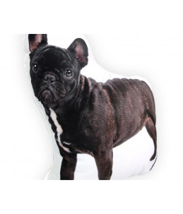 Knuffelkussen | French Bulldog Black